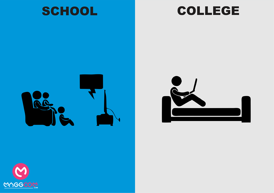 school life and college life
